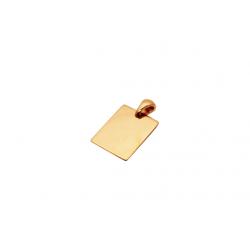 Auksinis pakabukas - plokštelė